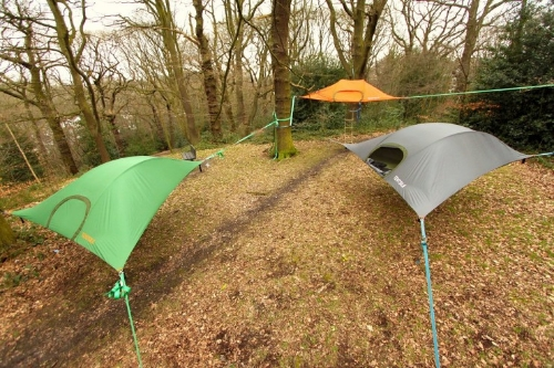 The Tentsile Stingray Tree Tent is practically a treehouse you can take anywhere. The Stingray can be suspended in the trees by three heavy duty straps. & Tentsile Stingray Tree Tent - Buy Tentsile Stingray Tree Tent Online